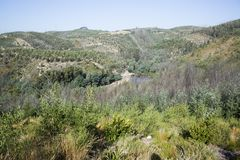 Park of Alfusqueiro Stock Images