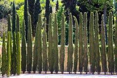 Park, Alhambra, Granada, Andalusia, Spain Stock Image