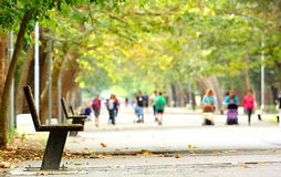 Park alley. With bench (benches) and many people walking stock photography