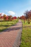 Park alley in autumn. Sosnowiec, Poland Royalty Free Stock Photo