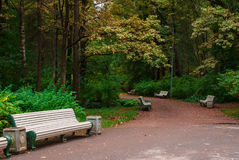 Park alley with benches. Curved walkway with empty benches in the autumn park Stock Image