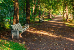 Park alley with benches. Alley with empty benches in the autumn park Royalty Free Stock Images