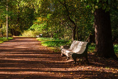 Park alley with benches. Alley with empty benches in the autumn park Royalty Free Stock Photo