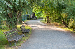 Park Alley Royalty Free Stock Photography
