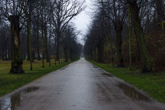 Park alley Charlottenburg Palace in rainy weather Royalty Free Stock Images