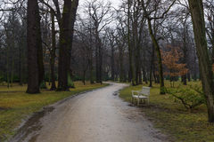 Park alley Charlottenburg Palace in rainy weather Stock Images