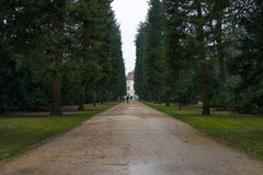 Park alley Charlottenburg Palace in rainy weather Royalty Free Stock Photos
