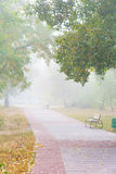 Park alley in the fog Royalty Free Stock Photography