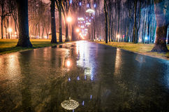 Park alley by night in Kharkiv Royalty Free Stock Photo