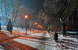 Park alley by night Royalty Free Stock Photography