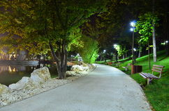 Park alley at night time. Image of an empty park alley in the night time under pole lights Royalty Free Stock Images