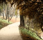 Park alley painting. Beautiful realistic painting of park alley in the fall season Stock Photo