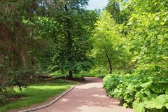 Park alley. View of Sofiyivsky Park botanical garden in Uman city, Ukraine Royalty Free Stock Photos