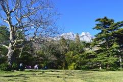 Park in Alupka. Crimea overlooking the mountain Ai-Petri stock images