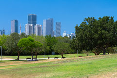 Park And Skyscrapers Royalty Free Stock Photo