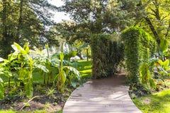 Park, Annecy Zdjęcia Royalty Free