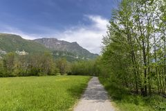 Park of the Annone lake, italy royalty free stock image