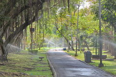 Park. The park is aplace of rest and exercise Stock Image