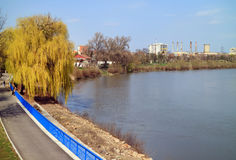 Park of Arad, Mures Valley, Romania. The promenade of Mures river in Arad town, Romania, Europe Royalty Free Stock Image