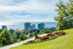 In the Park-the arboretum of Sochi. In the Park-the arboretum of Sochi city on a Sunny autumn day Royalty Free Stock Photo