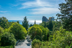 In the Park-the arboretum of Sochi. In the Park-the arboretum of Sochi city on a Sunny autumn day Royalty Free Stock Images