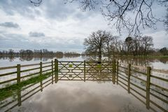 Park area flooded in the UK during winter seen through gate. Flooded park in the UK with trees partially submerged under water and nice reflections with stormy Stock Photo