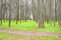 A park is an area of natural, semi-natural or planted space set aside for human enjoyment. And recreation or for the protection of wildlife or natural habitats Royalty Free Stock Photography