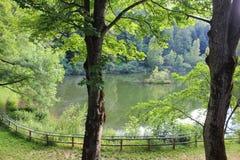 Park around a lake Royalty Free Stock Photo