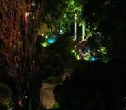 Park artistic illumination. Stock Photos