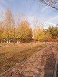 Park in Astana Stock Image