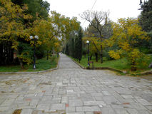 Park in Athens, Greece, in autumn Stock Photos