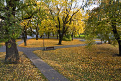 Park in autumn. Royalty Free Stock Photography