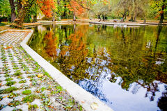 Park in Autumn Stock Image