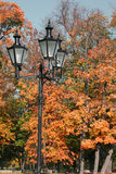 Park in autumn. Streetlamp and park in autumn Royalty Free Stock Photography