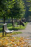 Park in autumn Stock Images