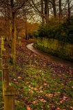 Park in the Autumn Royalty Free Stock Photography