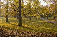 Park in autumn. Pathway through scenic park with scattered autumn leaves Royalty Free Stock Photo