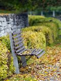 Park in autumn. Autumn leaves fallen on a bench Royalty Free Stock Images