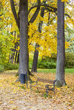 Park in autumn. Bench littered with leaves Royalty Free Stock Photos
