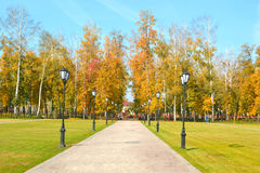 Park in autumn. With blue sky lanterns stock image
