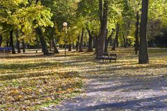 Park in autumn - Bratislava Stock Photos