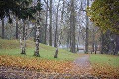 Park in autumn. Gatchina, Leningrad region, summer and park greenery Stock Image