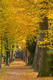 Park in autumn, Karlsruhe, Germany Stock Photography