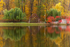 Park, autumn, nature, panorama, landscape, garden, colorful tree Stock Photo