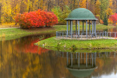 Park, autumn, nature, panorama, landscape, garden, colorful tree Royalty Free Stock Photography