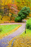 The park in the autumn Stock Photography