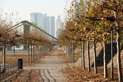 City life in autumn season royalty free stock photo
