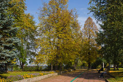 Park in an autumn sunny day Royalty Free Stock Photography
