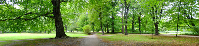 Park in autumn time Stock Photography