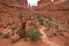 Park Avenue in Arches Royalty Free Stock Photo